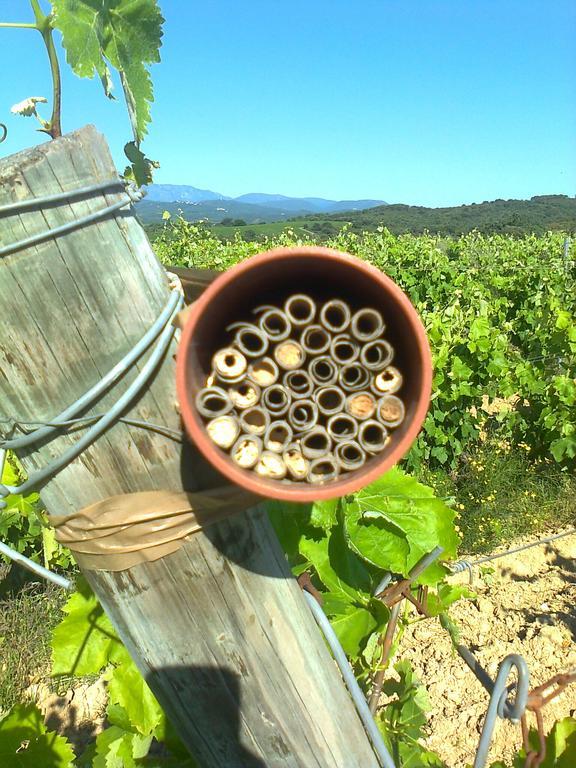 Biodiversit chambre d 39 agriculture des pyr n es orientales - Chambre d agriculture pyrenees atlantiques ...